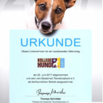 Urkunde zur Teilnahme am Kollege Hund Tag 2017